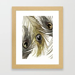 Gold and Silver Peacock Feathers Framed Art Print
