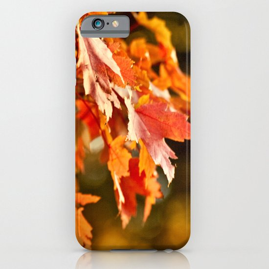 Fleeting Warmth iPhone & iPod Case