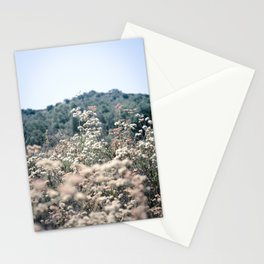 Buckwheat Afternoon Stationery Cards