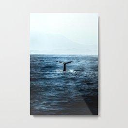Ocean Teal Whale Metal Print
