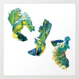 Ocean Dream- Betta Fish Art Print