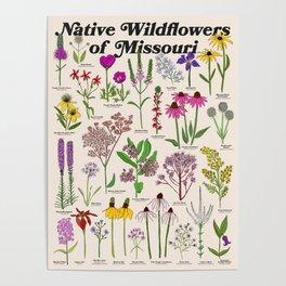 Missouri Wildflowers Poster