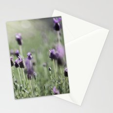lavender in summer light Stationery Cards