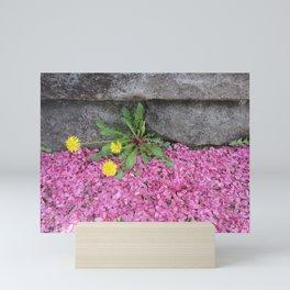 Dandelion in Pink Mini Art Print