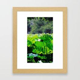 Lotus and cherrytrees Framed Art Print