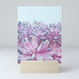Sweet Succulents Mini Art Print