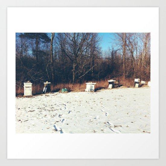 Beehives Art Print