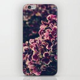 hydrangea - deep purple iPhone Skin