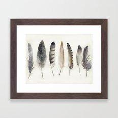native earth feathers Framed Art Print