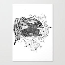 Rabbitfly Canvas Print