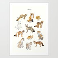 fleet foxes Art Prints featuring Foxes by Amy Hamilton