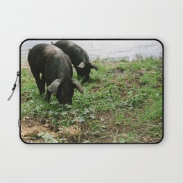 Pigs Snacking Laptop Sleeve