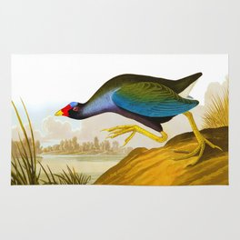 Purple Gallinule Bird Rug