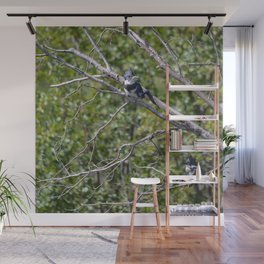 Two 4 One - Belted Kingfisher Wall Mural