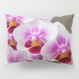 Phalaenopsis Orchid named Be Tris Pillow Sham