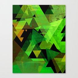 AARON Canvas Print