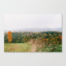 Wild Grasses in Vermont Valley - 35mm Film Canvas Print