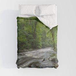 Appalachian Adventure - Ricketts Glen State Park Comforters