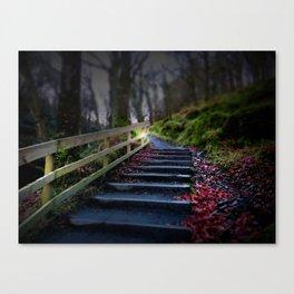 Glendalough Fairytale Path II Ireland Landscape Photography Canvas Print