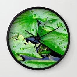 Peek  A Boo frog Wall Clock