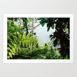 Penang Hill's inner Valley. Art Print