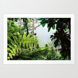 Penang Hill's inner Valley. Art Print