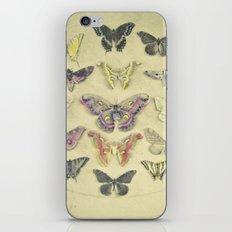 Butterflies and Moths iPhone Skin