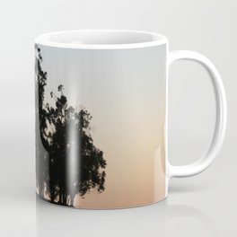 Eucalyptus trees at sunset Coffee Mug