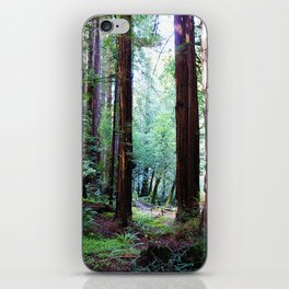 Muir Woods 2 iPhone Skin