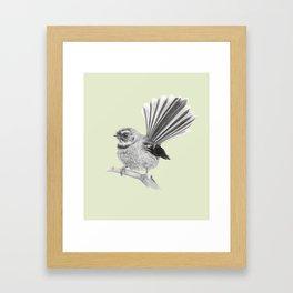 Piwakawaka   NZ Fantail Framed Art Print