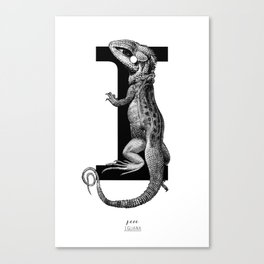 letter i for iguana Canvas Print