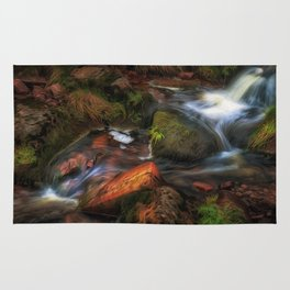 Colours of Autumn in a Brecon stream Rug