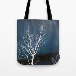 Winter Elegance Tote Bag