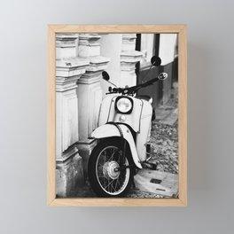 Schwalbe Framed Mini Art Print