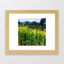 Malibu Creek State Park in Full Bloom Framed Art Print