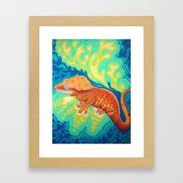 Red Crested Gecko Framed Art Print