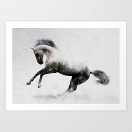 White Stallion Art Print