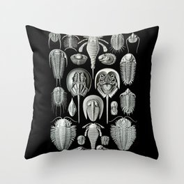 Trilobites and Fossils by Ernst Haeckel Throw Pillow