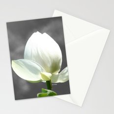 Pure Flower Stationery Cards