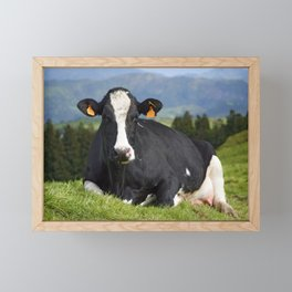 Cow portrait Framed Mini Art Print