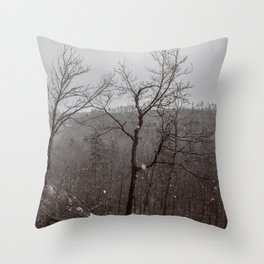 Wintry Desolation Throw Pillow