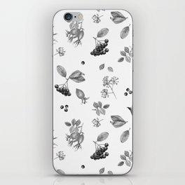 rosehip, chokeberries and teasel iPhone Skin