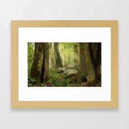 Forest dreams Framed Art Print