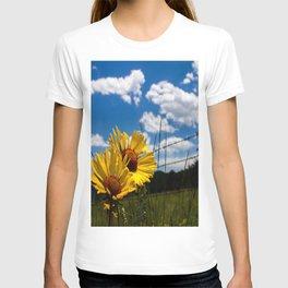 A Rocky Mountain Sunflower T-shirt