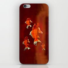 SKU-OLDEN FISH 037 iPhone & iPod Skin