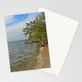 Gathering at the River II Stationery Cards
