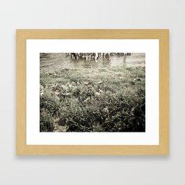 Green grass Framed Art Print