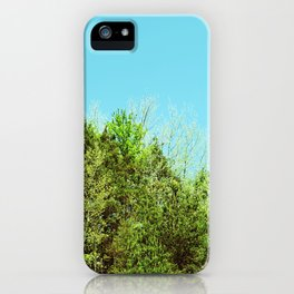 Natural Skyline iPhone Case