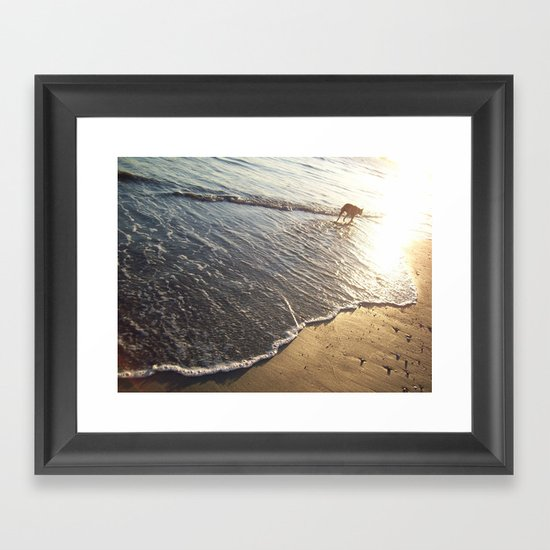 Shoreline Dog Framed Art Print