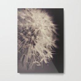 Make a wish! Metal Print